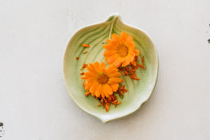 Calendula Benefits and Uses